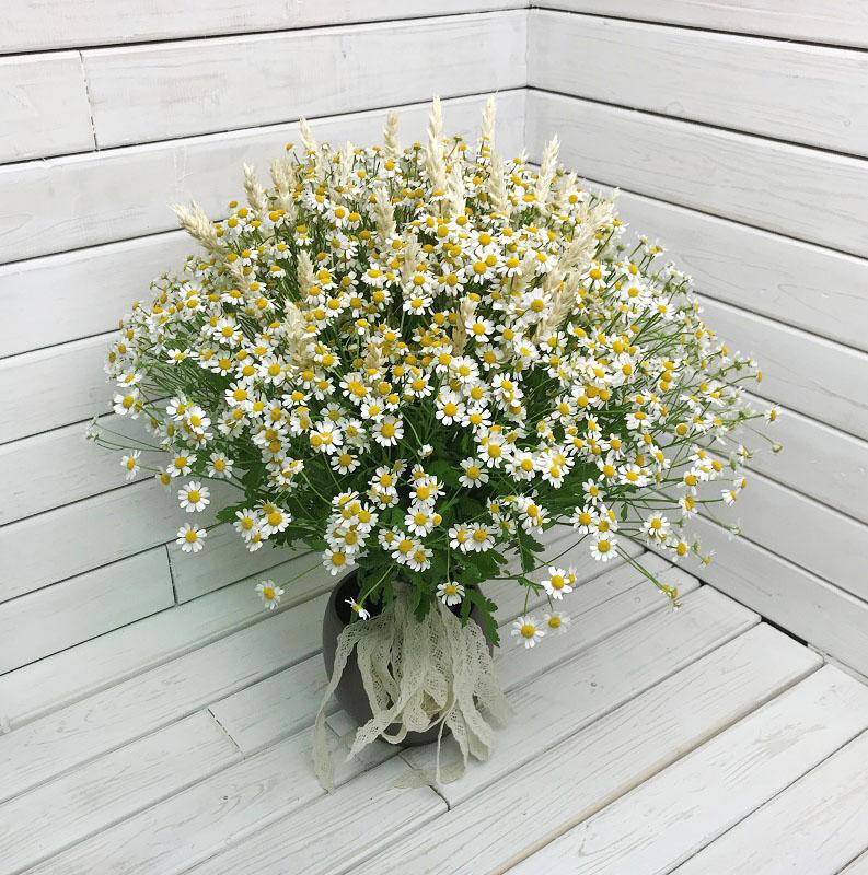 Заказать букет цветов с доставкой в москве недорого на первое сентября